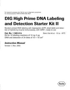 Dig High Prime DNA Labeling and Detection Starter Kit ii