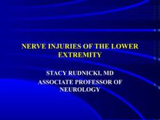 NERVE INJURIES OF THE LOWER EXTREMITY[下肢神经损伤](PPT-39)